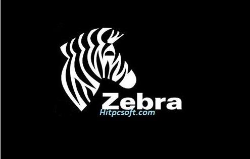 Zebra Designer Pro Crack 3.20 + Keys Download 2021